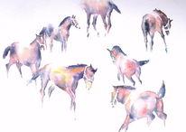 Pferde, Tiere, Fohlen, Weide