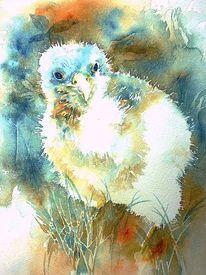 Vogel, Kestrel, Turmfalke, Aquarellmalerei