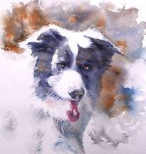 Hund, Hundeaugen, Haustier, Aquarellmalerei