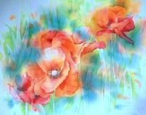 Blumen, Wiese, Aquarellmalerei, Mohnwiese
