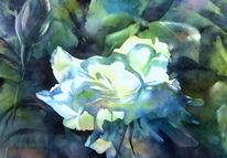 Aquarellmalerei, Rose, New dawn, Blumen