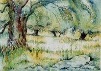 Oliv, Hain, Aquarellmalerei, Kreta
