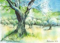 Frankreich, Baum, Aquarellmalerei, Olivenbaum