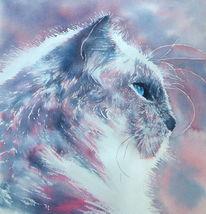 Pink, Katze, Aquarellmalerei, Tiere