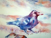 Vogel, Rabe, Rot, Aquarellmalerei