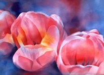 Aquarellmalerei, Blumen, Rot, Tulpen