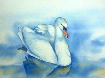 Wasser, Weiß, Weißer schwan, Aquarellmalerei