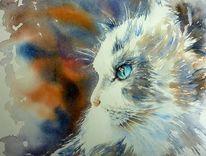 Weiß, Tiere, Katze, Aquarellmalerei