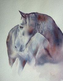 Pferde, Aquarellmalerei, Charakter, Mähne