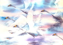 Vogel, Aquarellmalerei, Flügel, Schwan