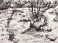 Schwalm, Lüttelforster mühle, Baum, Wald