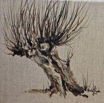 Kopfweide, Weiden, Baum, Aquarell
