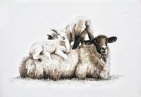 Schaf, Lamm, Tuschmalerei, Sepia