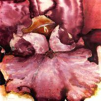 Iris, Tusche, Blumen, Blüte