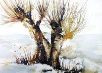 Landschaft, Kopfweide, Weide, Baum