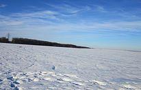 Feld, Winter, Schnee, Natur