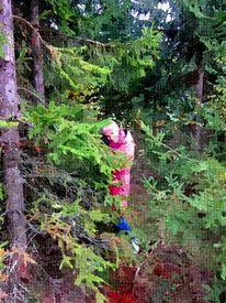 Wald, Tanne, Menschen, Mädchen