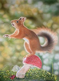 Natur, Tiere, Airbrush, Eichhörnchen