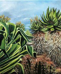 Agaven, Kaktus, Grün, Mediterran