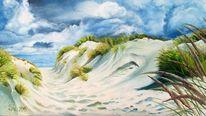 Weg, Nordsee, Strandhafer, Wolken