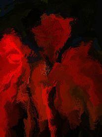Mohn, Farben, Natur, Digital