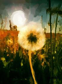 Digital, Pusteblumen, Sommer, Farben