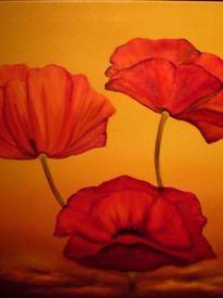Blumen, Pflanzen, Mohn, Malerei