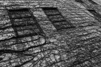 Horror, Philosophie, Fotografie, Modern