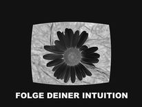 Digitale kunst, Folge, Intuition