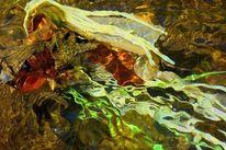 Landschaft, Fotografie, Hyperrealismus, Digitale kunst