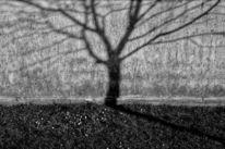 Horror, Menschen, Gesellschaft, Fotografie