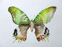 Schmetterling, Insekten, Schlips, Portrait