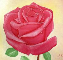 Muss, Rose, Malerei, Pflanzen
