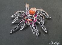 Selbsttherapie, Spinne, Vogelspinne, Malerei