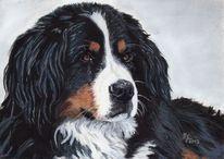 Wandgestaltung, Pastellmalerei, Malerei, Hund