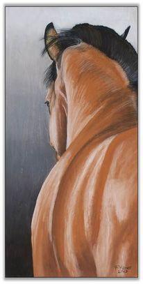 Pferde, Zeichnungen, Der blick