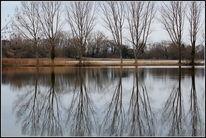 Spiegelung, Wasser, See, Stille