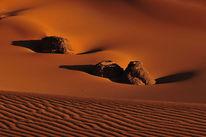 Struktur, Dünen, Wüste, Monochrom