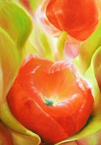 Licht, Frühlingsmorgen, Sonne, Blätter