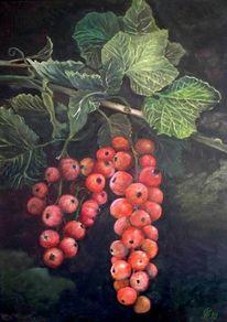 Johannisbeere ribes rubrum, Malerei