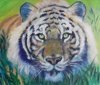acrylmalerei tiger 66 bilder und ideen gemalt auf kunstnet. Black Bedroom Furniture Sets. Home Design Ideas