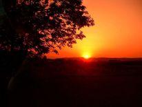 Sonne, Abend, Sonnenuntergang, Orange