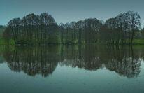 Regen, Teich, Wasser, Frühling
