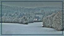 Rauhreif, Weiß, Wald, Landschaft