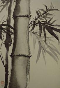 Pflanzen, Bambus, Zeichnung, Sumi
