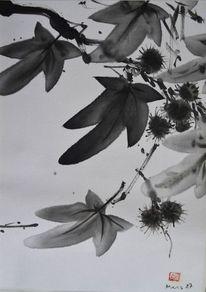 Sumi, Herbst, Maronen, Blätter