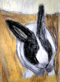 Kaninchen, Pastellmalerei, Zeichnungen