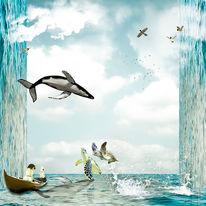 Himmel, Tiere, Wasser, Licht