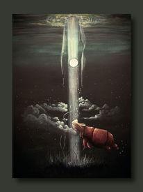Nacht, Nashorn, Wolken, Lichtschein