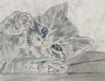 Tierzeichnung, Pastellmalerei, Katze, Katzenzeichnung
